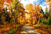 Autumn Road を New Hampshire