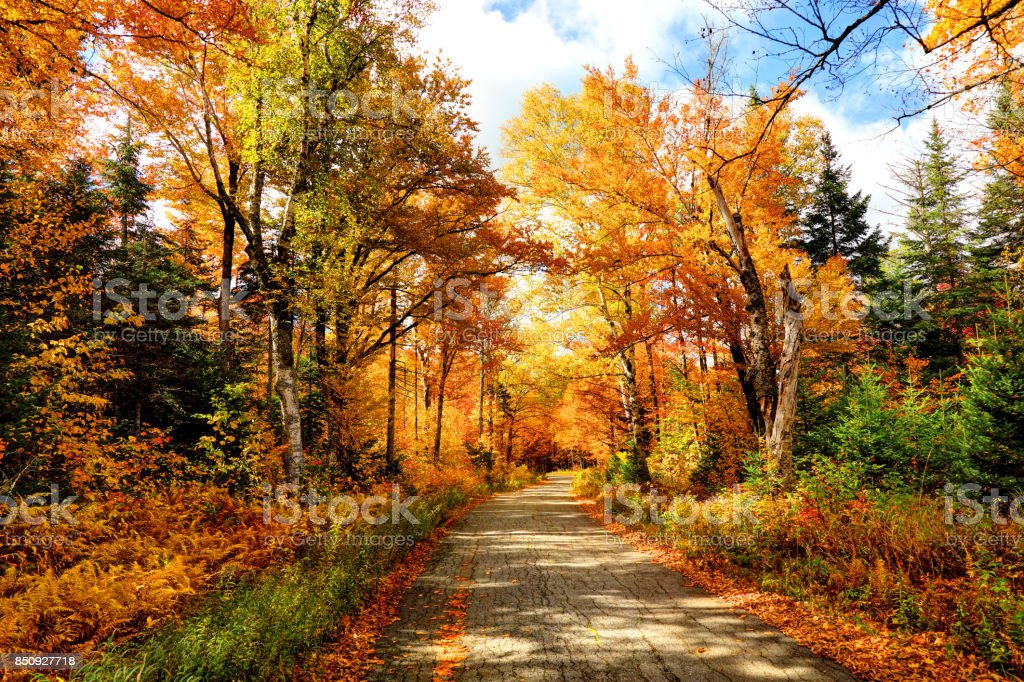 Autumn Road in New Hampshire stock photo