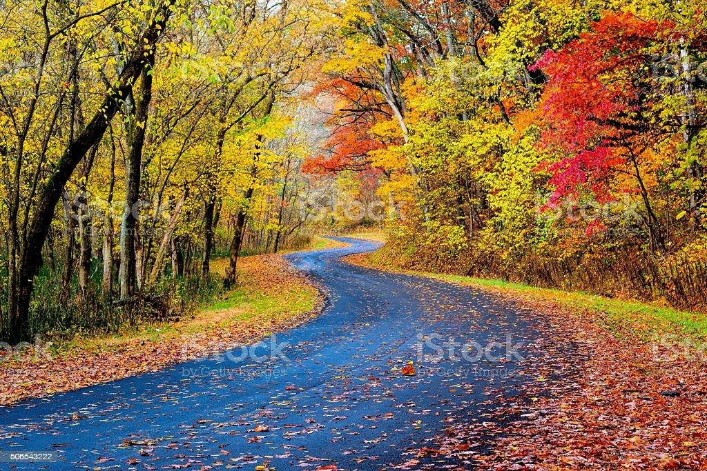 Autumn Road in Ohio stock photo