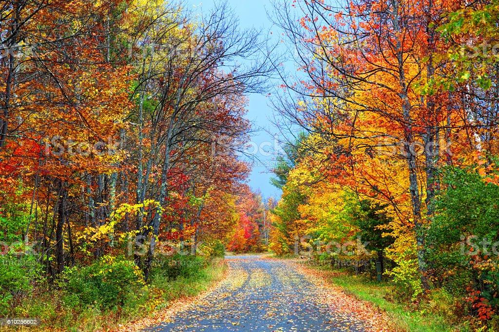 Autumn road in the Adirondacks region of New York stock photo