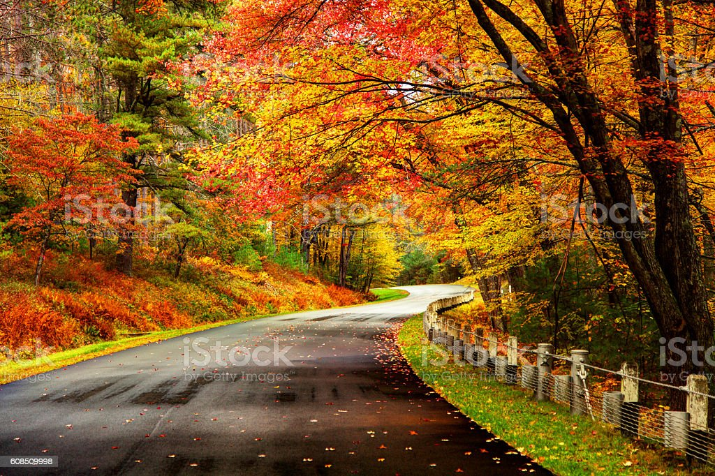 Autumn road in the Quabbin region of Massachusetts stock photo