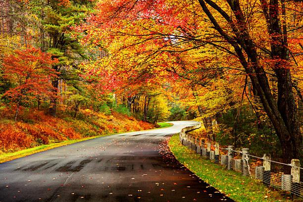 autumn road in the quabbin region of massachusetts - feuillage automnal photos et images de collection