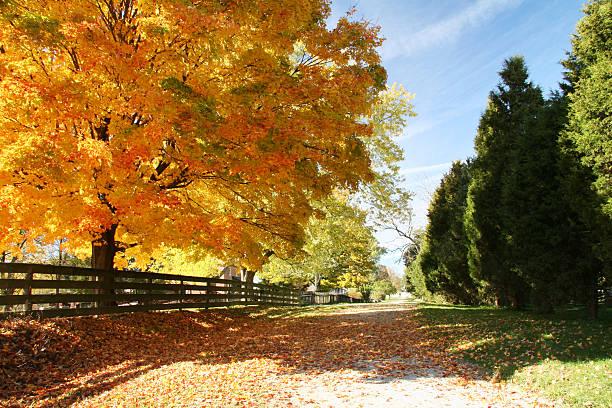 Autumn Road Ohio stock photo