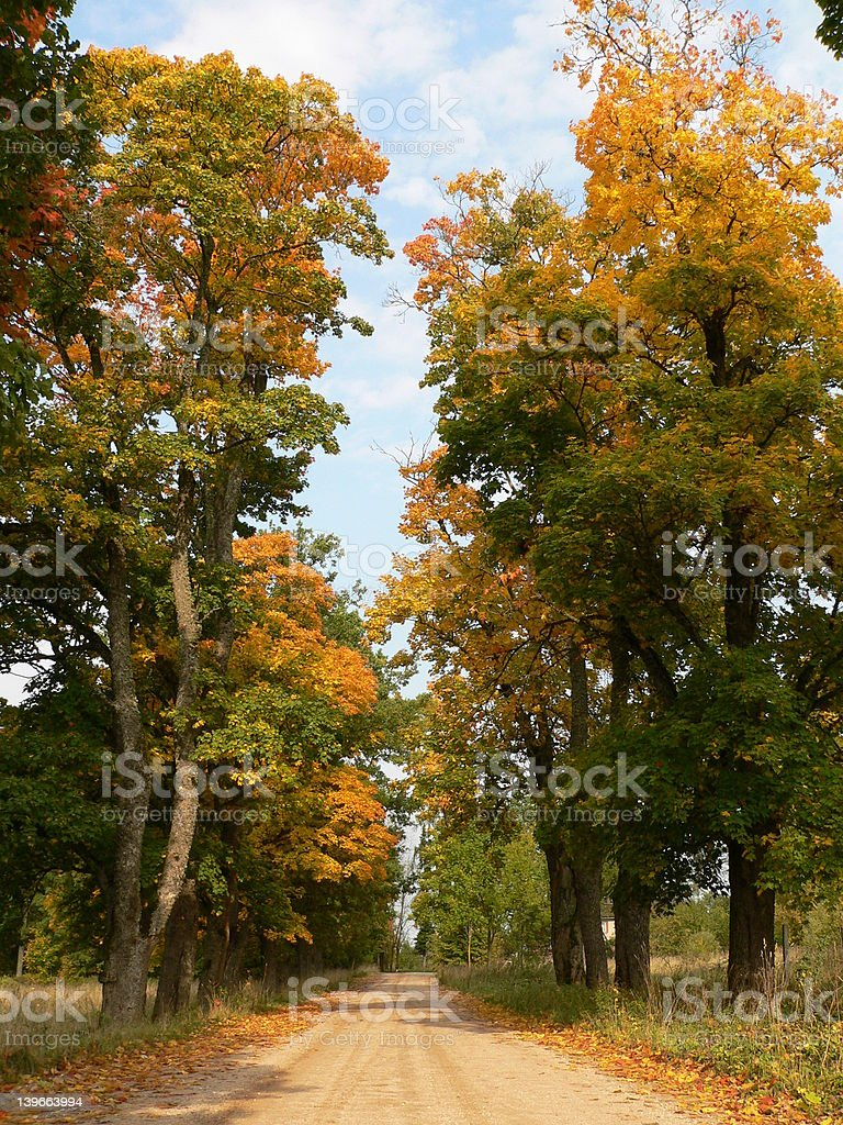 Autumn road royalty-free stock photo