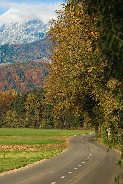 Herbst road – Foto