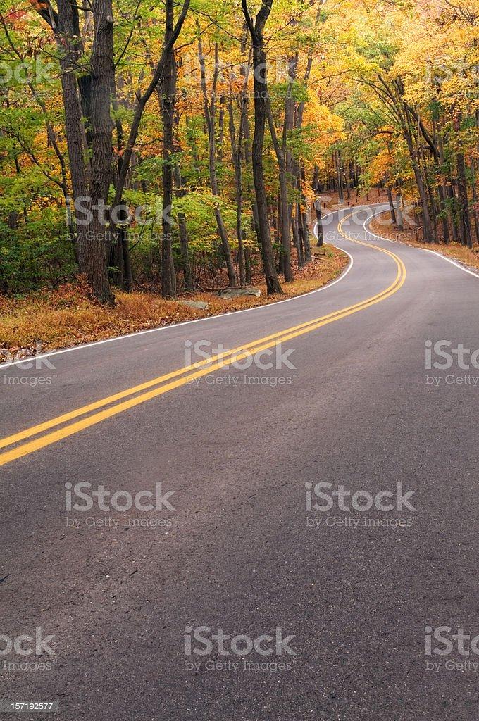Autumn Road Trip royalty-free stock photo