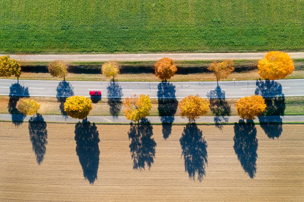 Autumn Road with Red Car, Aerial View stock photo