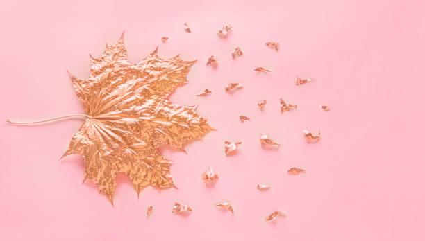 Herbst rose gold Maple Leaf mit Elementen Krümel auf Pastell rosa Papierhintergrund. Minimale Kreativkonzept mit Platz für Text. Ansicht von oben. – Foto