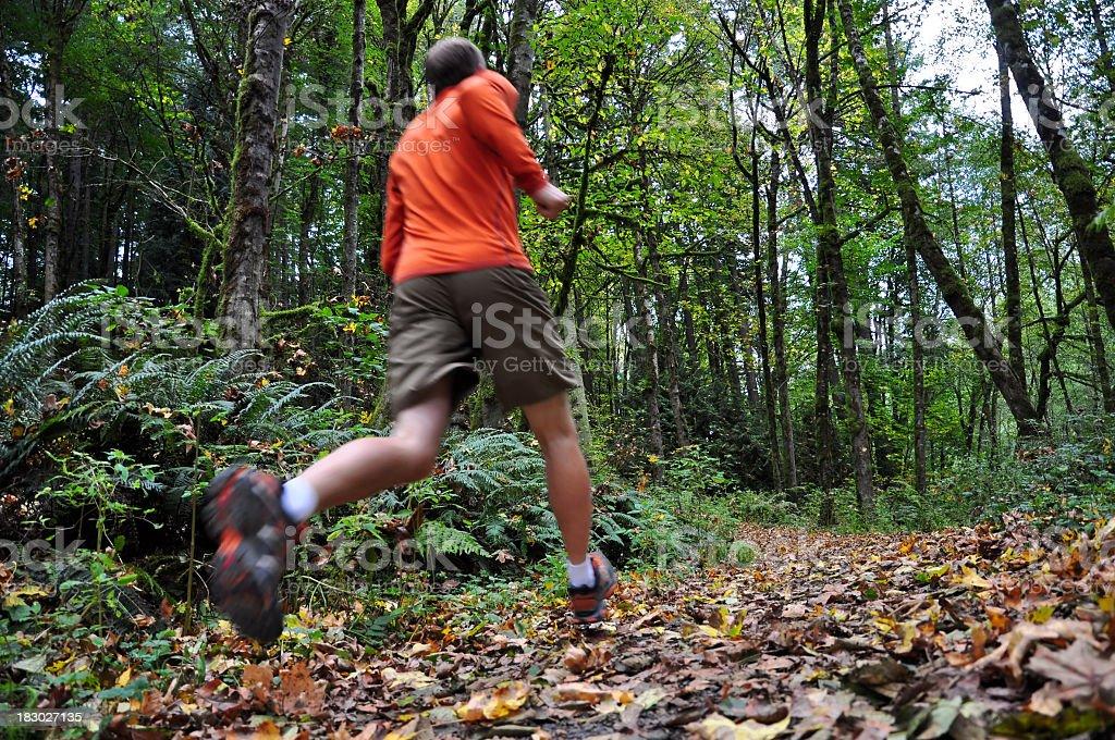 Autumn run for a man in tan shorts royalty-free stock photo