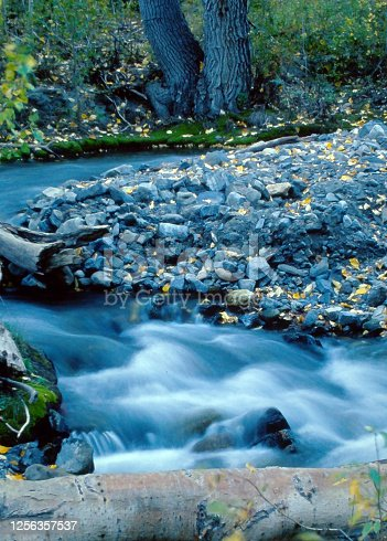 Rushing Stream In Owens Valley