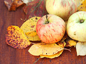 Autumn rustic apples. Farm, harvest apples on wooden background