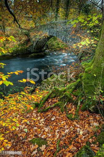 Clappersgate Bridge Autumnal/Autumn scene with leaves and a bridge in the lake district national park Cumbria.