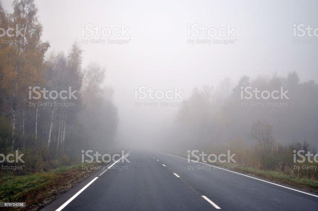秋天的場景。通過秋季森林的進退路。 免版稅 stock photo