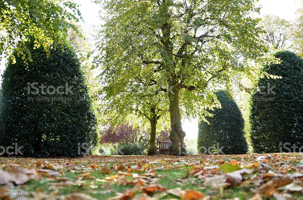 Autumn Scene in Chester Park royalty-free stock photo