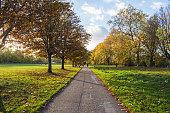 公園で秋のシーン