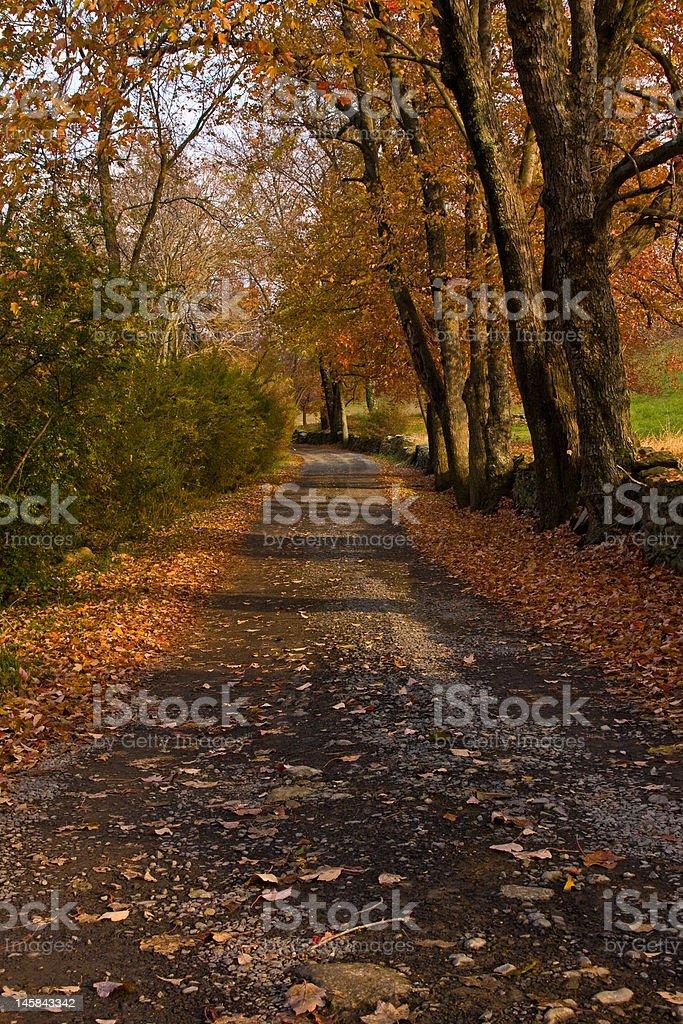 Autumn Scene in Virginia stock photo