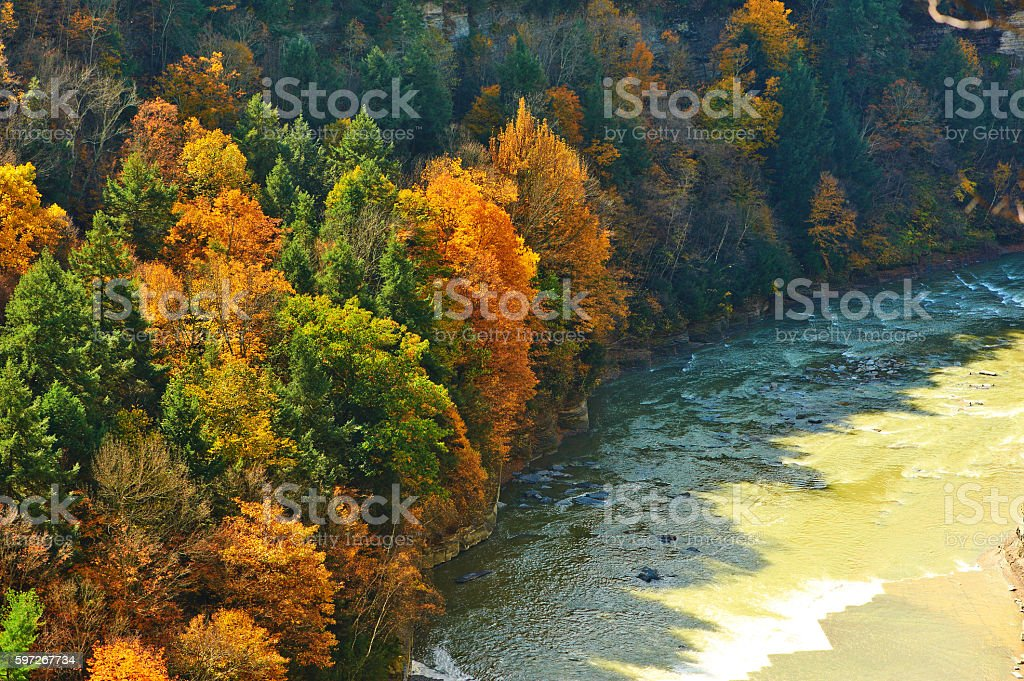 Autumn scene of river and forest royalty-free stock photo