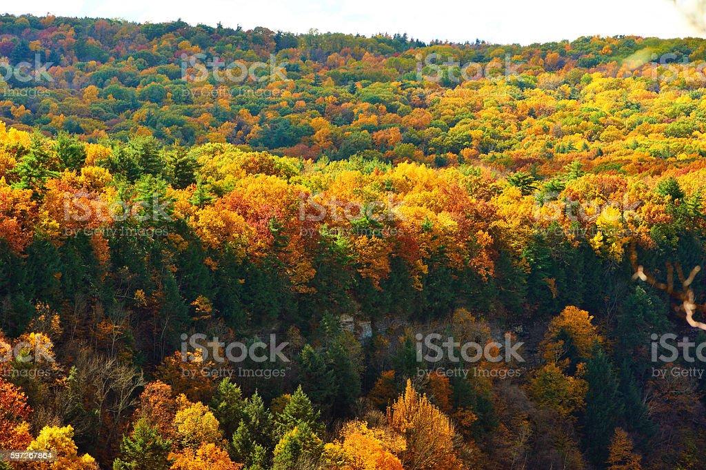 Herbst-Szene Lizenzfreies stock-foto