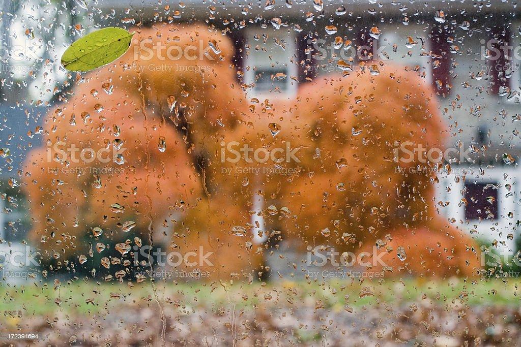 Autumn scene through the window royalty-free stock photo