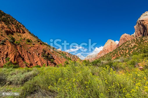 Autumn scenery in Zion National Park, on a brigth sunny day