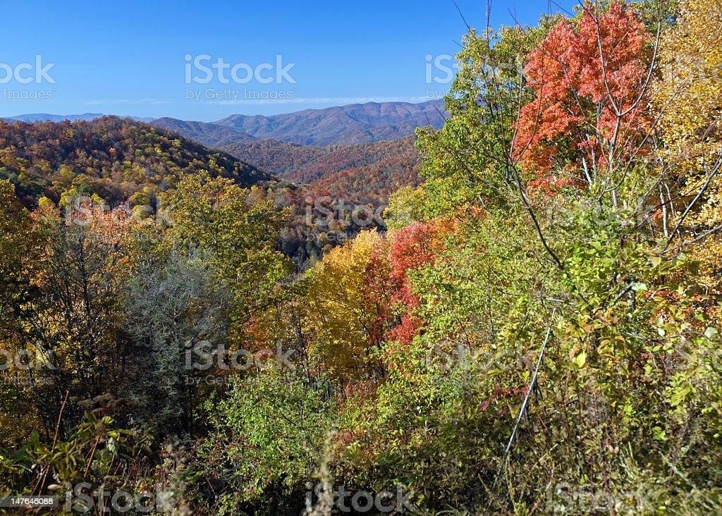 Autumn Scenic Overlook royalty-free stock photo
