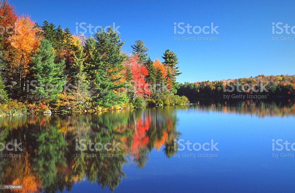 Autumn Scenic stock photo