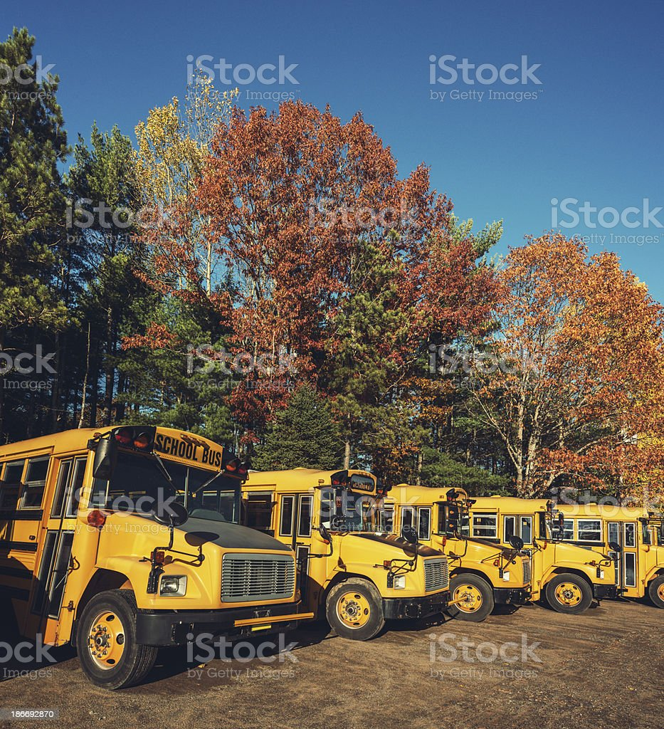 Autumn School Bus Fleet royalty-free stock photo