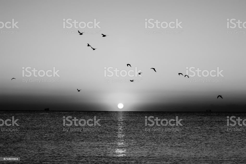 Autumn seascape at dawn in black and white stock photo