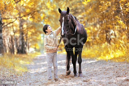 istock Autumn season happy teenager boy and horse walking in forest 516683613