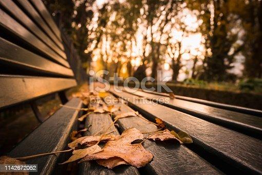 Autumn season in a Parisian park in Paris France