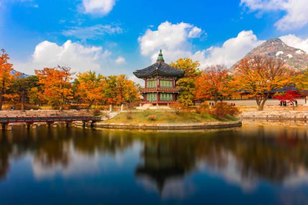 景福宮ソウル、南朝鮮の秋。 - ソウル ストックフォトと画像