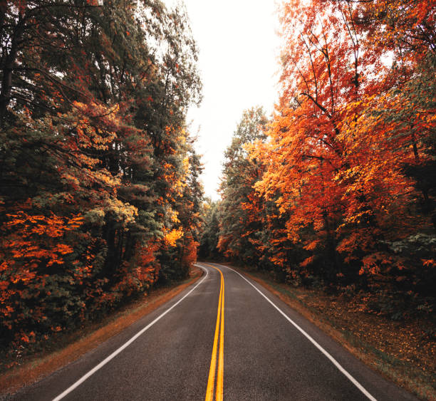 autumn season road in new england autumn season road in new england conway new hampshire stock pictures, royalty-free photos & images