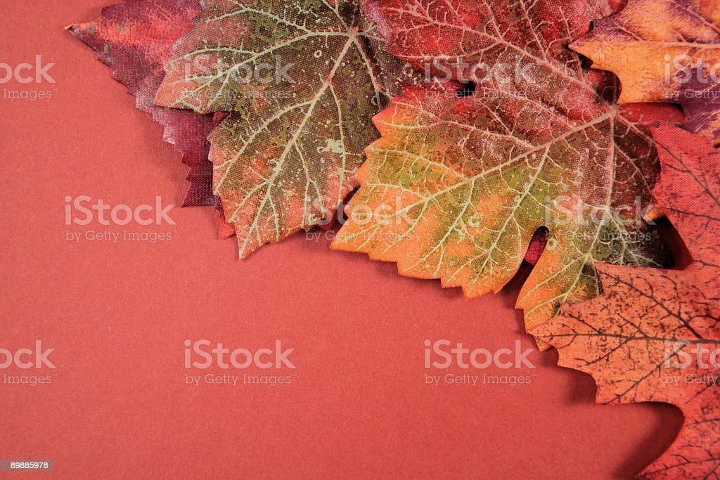 Autumn Series royalty-free stock photo