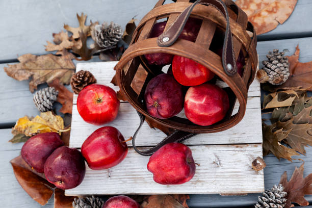 Autumn setup of red apples on wooden background, seasonal pattern of healthy fruits stock photo