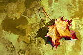 digiart - the coloured autumn sheet