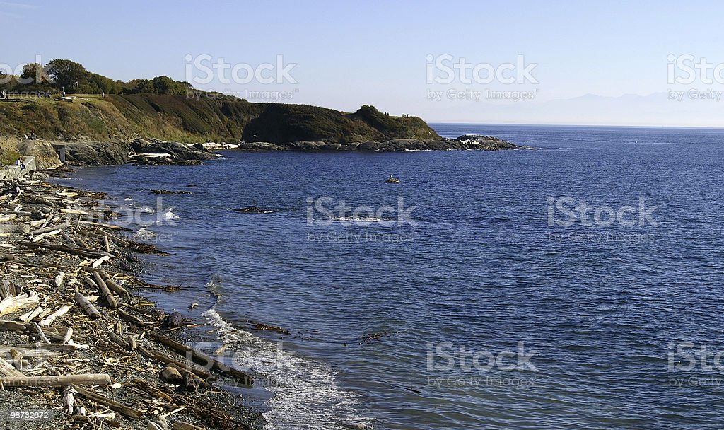 Autumn Shoreline royalty-free stock photo