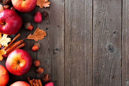 istock Autumn side border of apples and fall ingredients over wood 1042074016