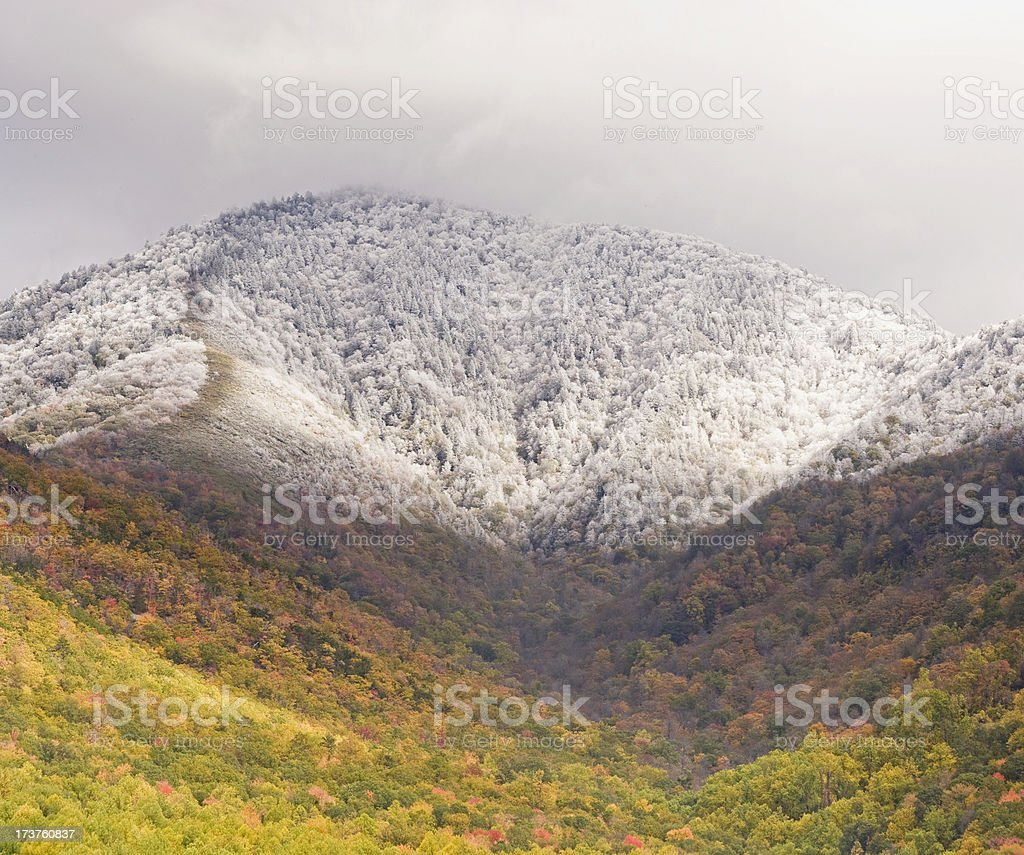 Autumn Snowfall (XXL) royalty-free stock photo