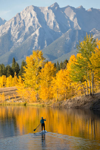 Autumn Stand Up Paddleboard Adventure A woman enjoys a end-of-day stand up paddleboard trip on a lake in the Rocky Mountains of Canada in autumn. reflection lake stock pictures, royalty-free photos & images