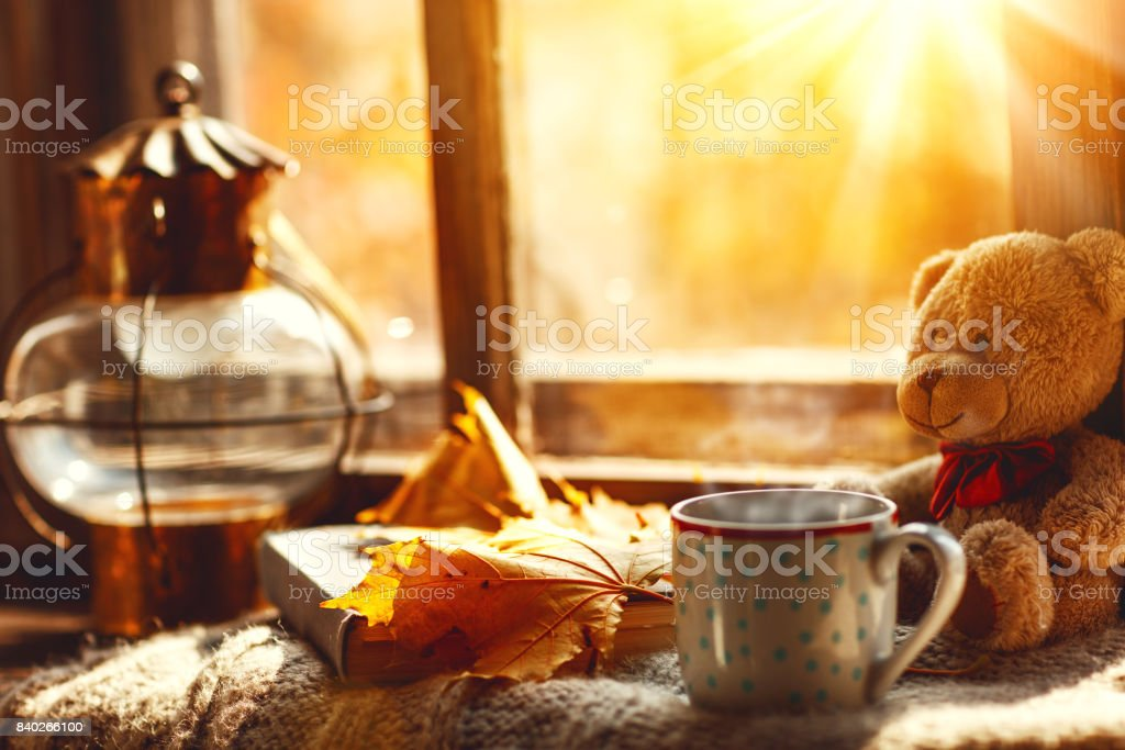 Autumn still life. A window,  hot tea mug book stock photo