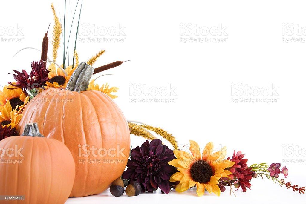 Autumn Still Life Frame royalty-free stock photo