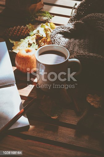 istock Autumn still life: leaves, cup of cocoa, apple, acorn, cones, sketchbook on wooden table 1028168164