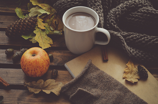 istock Autumn still life: leaves, cup of cocoa, apple, acorn, cones, sketchbook on wooden table 1028168444