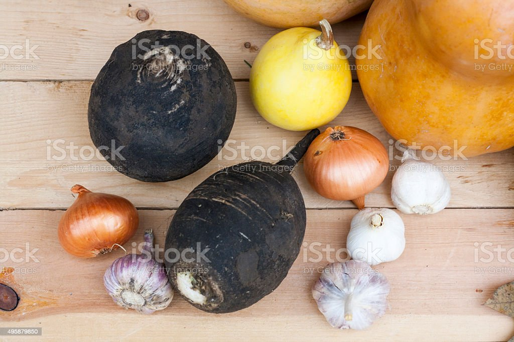 Autumn still life with pumpkins and autumn berry and vegetables royalty-free stock photo