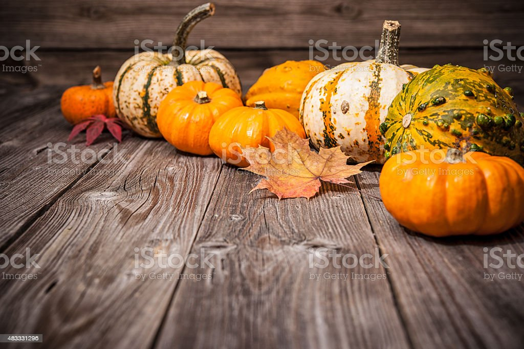 Autumn still life with pumpkins and leaves stock photo