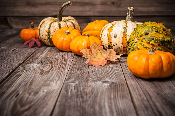 autumn still life with pumpkins and leaves - gourd stock photos and pictures