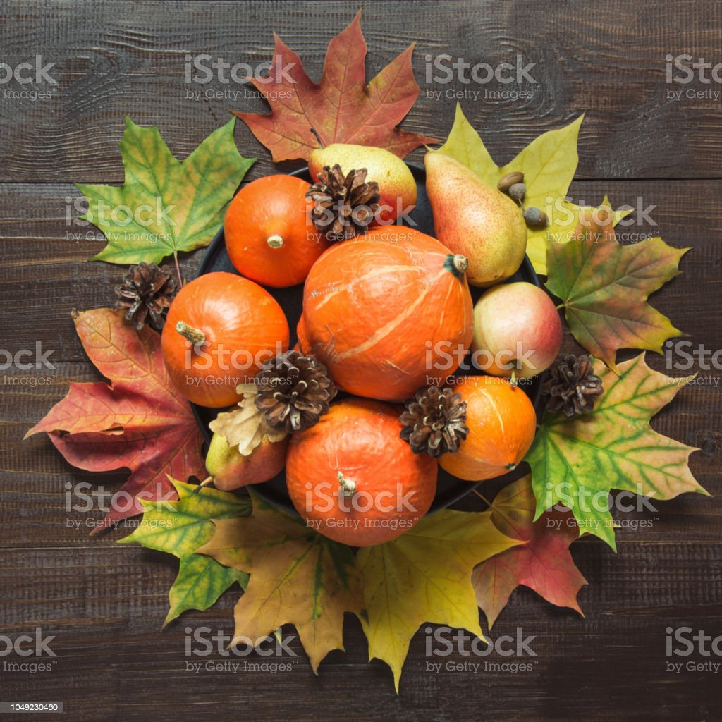 Autumn still life with pumpkins, cup of coffee, apples warm scarf on board. Copy space. Top view. stock photo