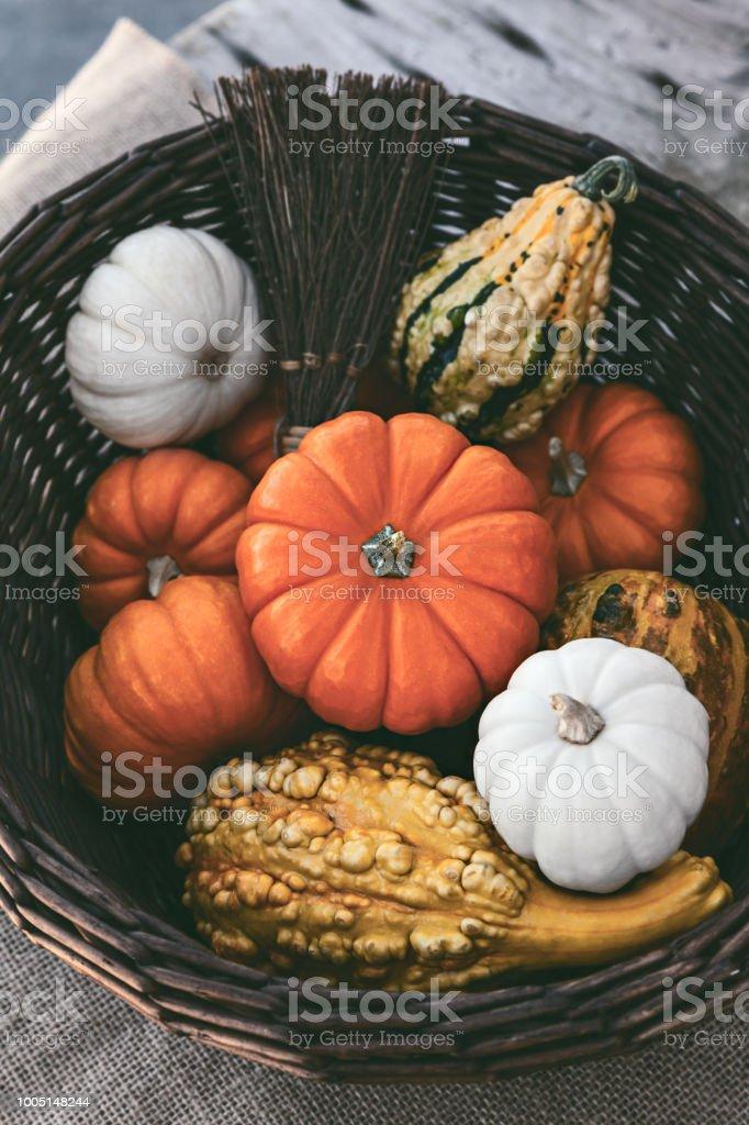 Autumn Still Life With Pumpkins stock photo