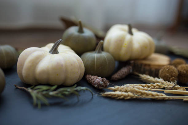 Autumn still life with pumpkins, wheat and spices stock photo