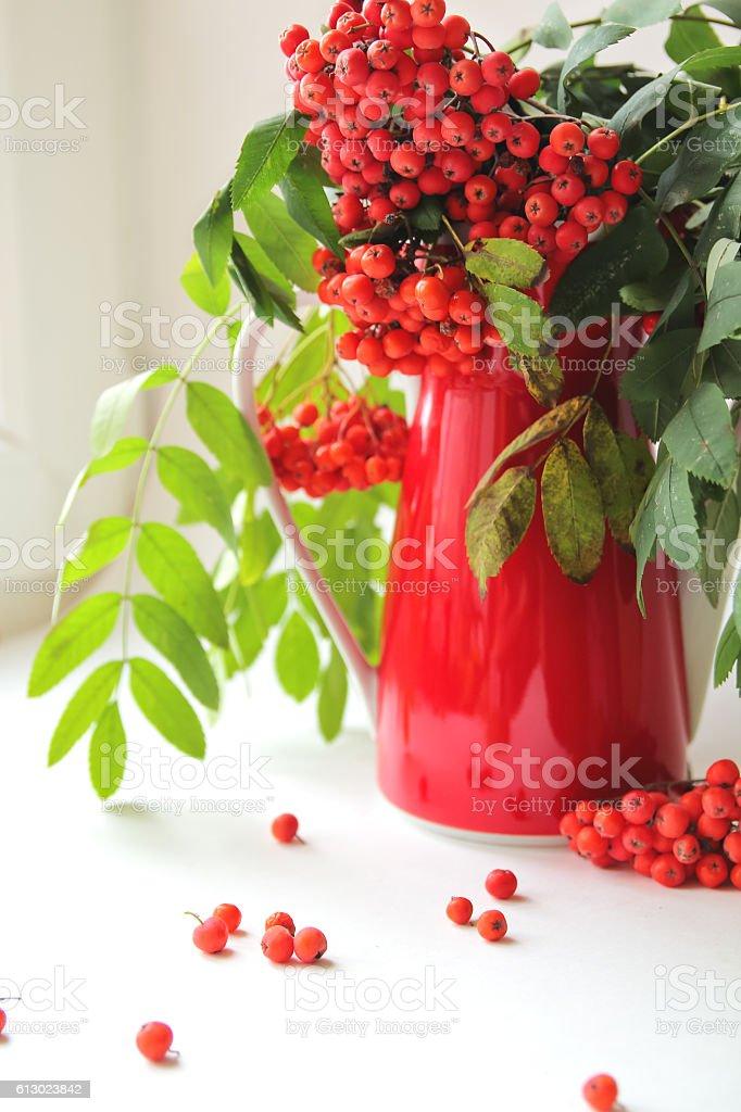 autumn still life with rowan in red vintage vase stock photo